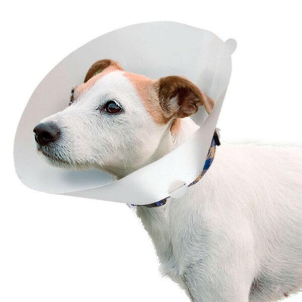 ветеринарные ошейники для собак