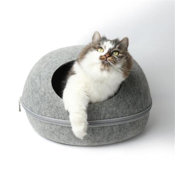 мягкое место для кошек